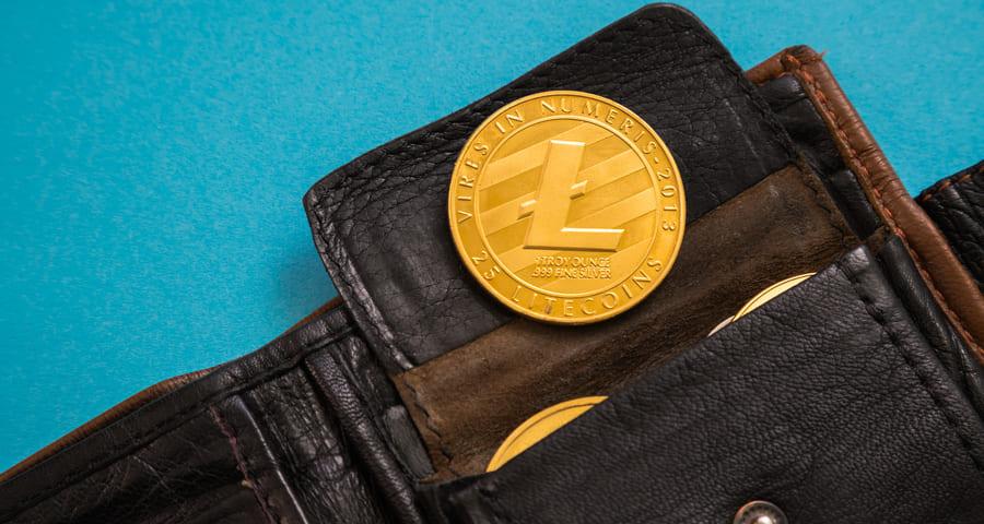La mejor monedero criptomonedas – ¿cuál es segura y económica?